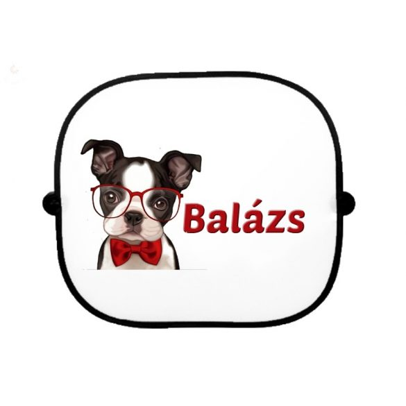 Autós napellenző egyedi névvel Kutyus szemüveggel